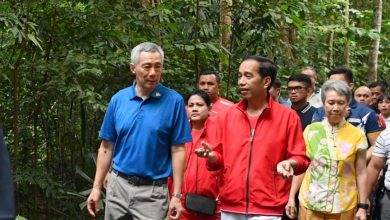 Photo of Presiden Jokowi dan PM Lee Tanam Pohon di Singapore Botanic Garden