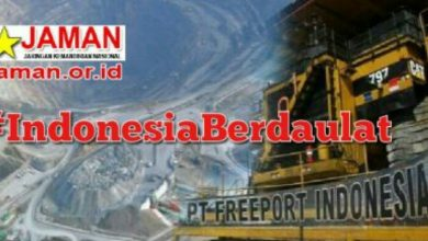 Photo of Freeport Tolak Skema Divestasi Saham, JAMAN: Menteri BUMN Lambat